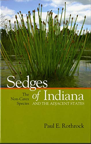 Sedges of Indiana and the Adjacent States: The Non-Carex Species (Hardcover): Paul Ernest Rothrock