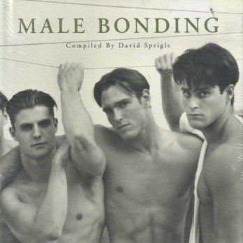 9781883923242: Male Bonding (FotoFactory Anthology Series)