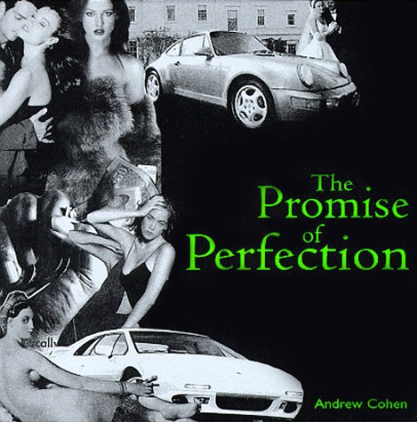 9781883929213: The Promise of Perfection