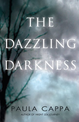 The Dazzling Darkness (Paperback): Paula Cappa