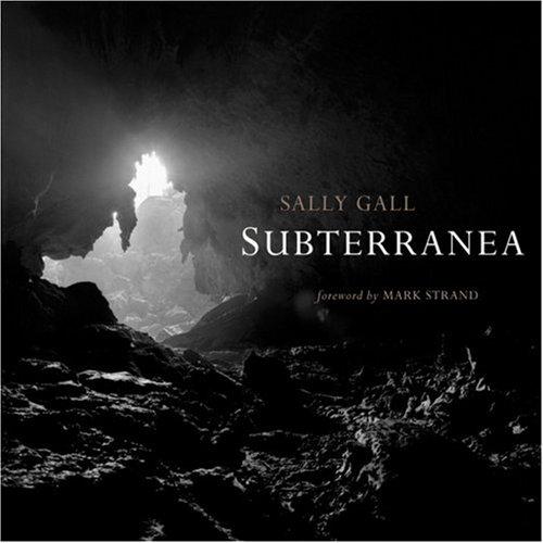 Subterranea (Mint First Edition): Sally Gall (Author, Photographer), Mark Strand (Foreword)