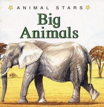 9781884628191: Big Animals (Animal Stars)