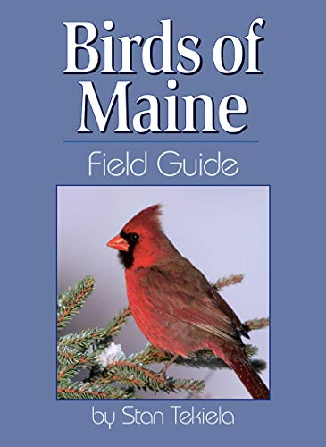 Birds of Maine Field Guide (Our Nature Field Guides): Tekiela, Stan