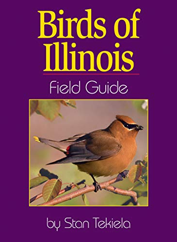 9781885061744: Birds of Illinois Field Guide