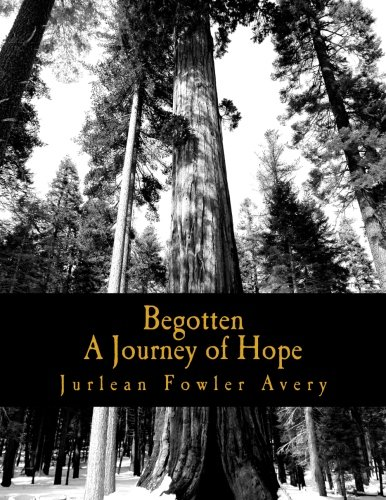 9781885513014: Begotten: A Journey of Hope