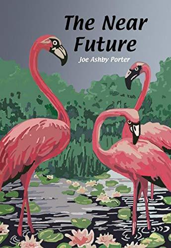 9781885586414: The Near Future