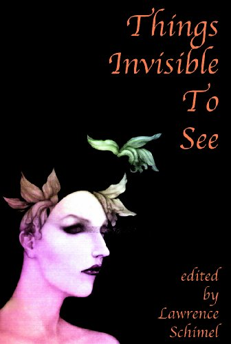 THINGS INVISIBLE TO SEE: Gay and Lesbian: Lawrence Schimel