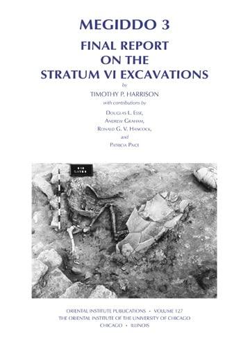 9781885923318: Megiddo 3: Final Report on the Stratum VI Excavations (Oriental Institute Publications)