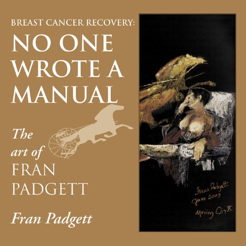 9781886298187: Breast Cancer Recovery: No One Wrote a Manual