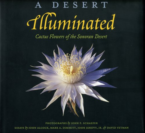 A Desert Illuminated: Cactus Flowers of the Sonoran Desert (1886679010) by John P. Schaefer