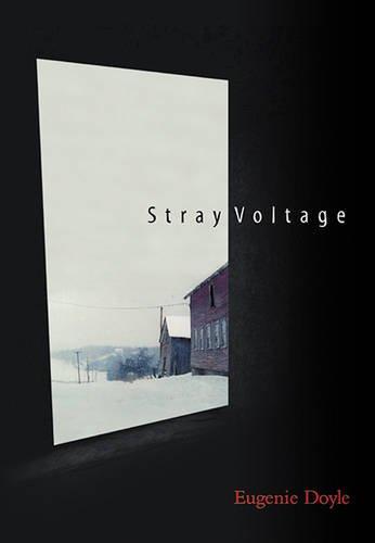 9781886910867: Stray Voltage