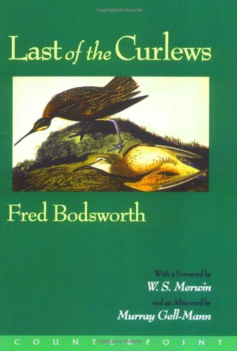 9781887178259: Last of the Curlews