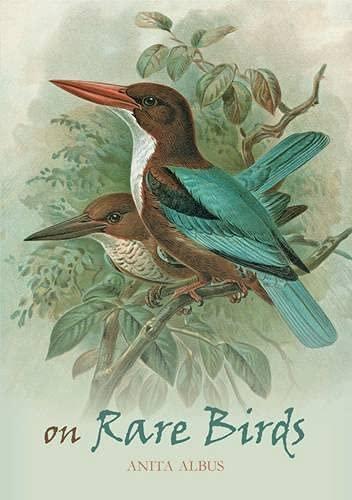 On Rare Birds: Anita Albus