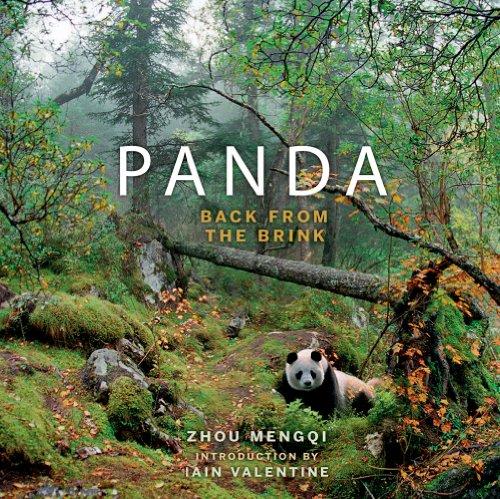 Panda: Back from the Brink. Zhou Mengqi: Mengqi Zhou