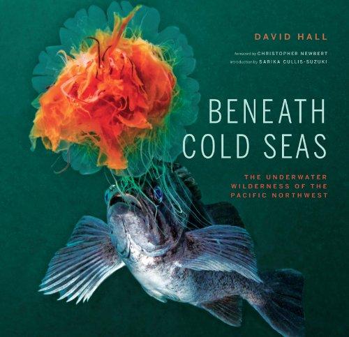 9781887354905: Beneath Cold Seas
