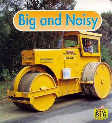9781887734240: Big and Noisy