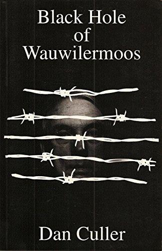 9781887776011: Black Hole of Wauwilermoos: An Airman's Story