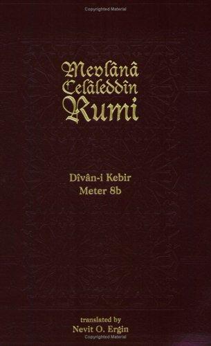 9781887991094: Divan-I-Kebir Meter 8b