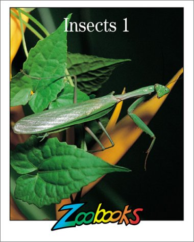 9781888153552: Insects 1 (Zoobooks Series)