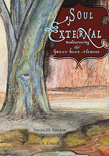 Soul External - Rediscovering The Great Blue Heron