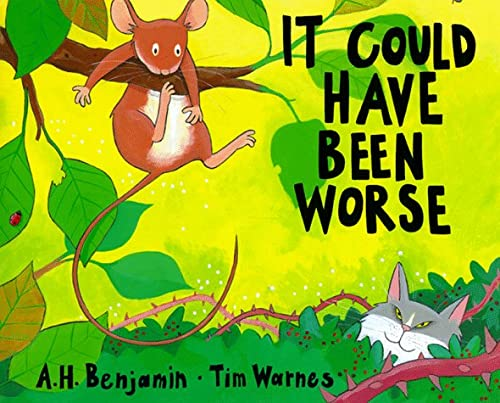9781888444261: It Could Have Been Worse: By A.H. Benjamin ; Pictures by Tim Warnes