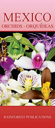 Mexico Orchids - all regions (Laminated Foldout Pocket Field Guide) (Mexico Field Guides) (English ...