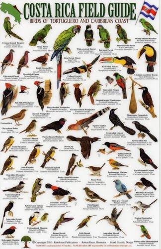 9781888538267: Birds of Tortuguero and the Caribbean Coast (Costa Rica Field Guides)