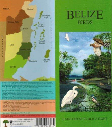 9781888538304: Birds (Belize Field Guides)