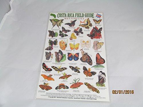 Costa Rica Field Guide: Butterflies: n/a