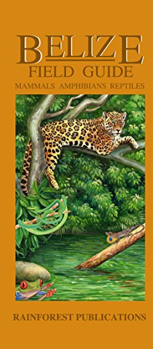 9781888538892: Mammals, Amphibians and Reptiles (Belize Field Guides)