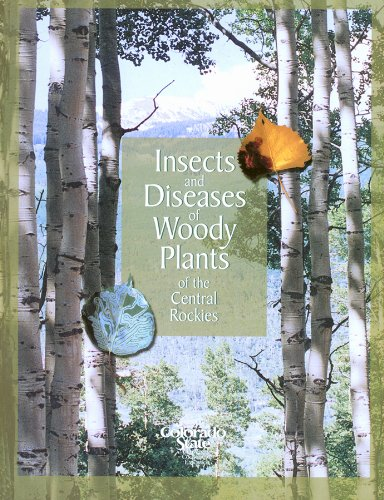 9781889143040: Insects and Diseases of Woody Plants of the Central Rockies