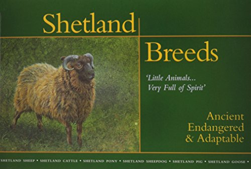 9781889274102: Shetland Breeds, 'Little Animals....Very Full of Spirit': Ancient, Endangered & Adaptable