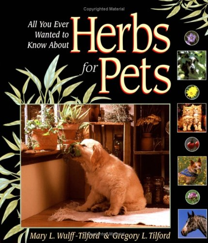 All You Ever Wanted To Know About Herbs