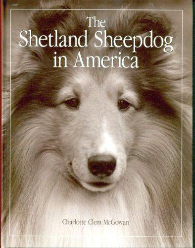 9781889576008: The Shetland Sheepdog in America