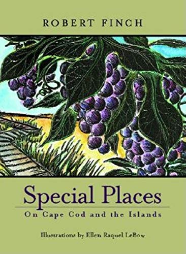 Special Places on Cape Cod and the Islands (1889833517) by Robert Finch