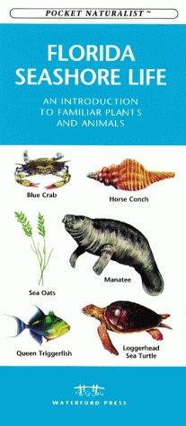 9781889903088: Florida Seashore Life: An Introduction to Familiar Plants and Animals (Pocket Naturalist)