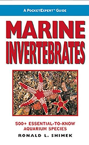 9781890087661: A PocketExpert Guide: Marine Invertebrates : 500+ Essential-to-Know Aquarium species