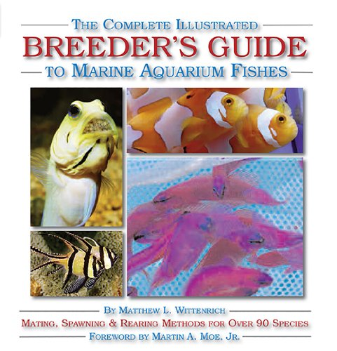 9781890087715: The Complete Illustrated Breeder's Guide to Marine Aquarium Fishes