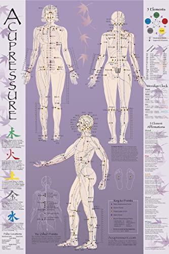 9781890258320: Acupressure Chart - Points & Meridians