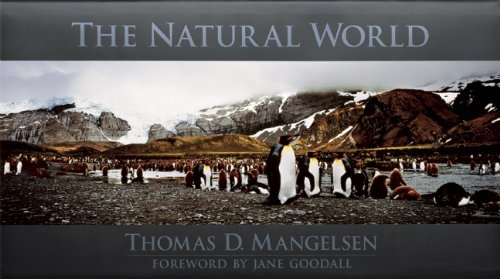 9781890310424: The Natural World