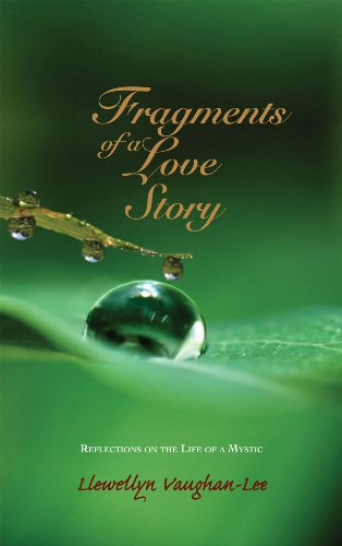 9781890350345: Fragments of a Love Story: Reflections on the Life of a Mystic