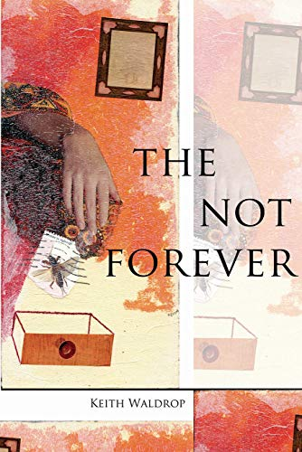 9781890650889: The Not Forever