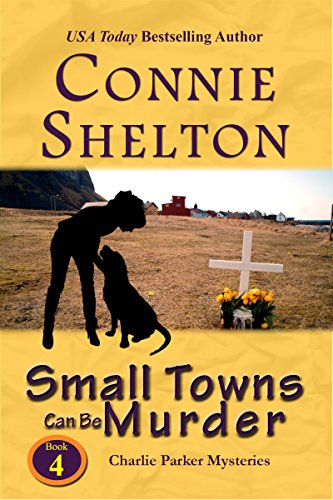 9781890768058: Small Towns Can Be Murder (Charlie Parker Mysteries)