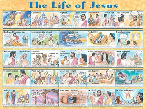 9781890947187: Life of Jesus Laminated Chart