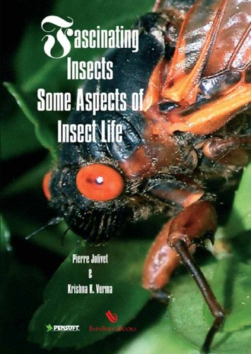9781891696206: Fascinating Insects: Some Aspects of Insect Life