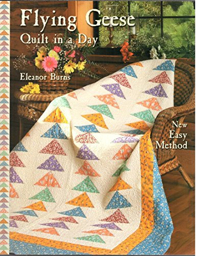 9781891776052: Flying Geese Quilt in a Day