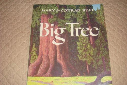 9781892857026: Big Tree