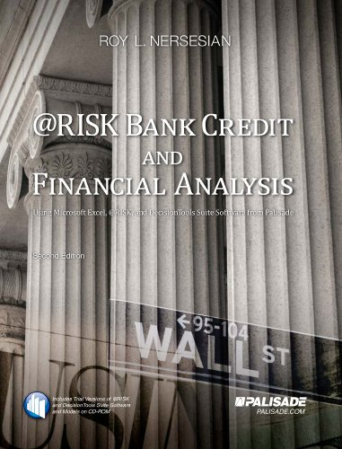 9781893281110: @RISK Bank Credit and Financial Analysis