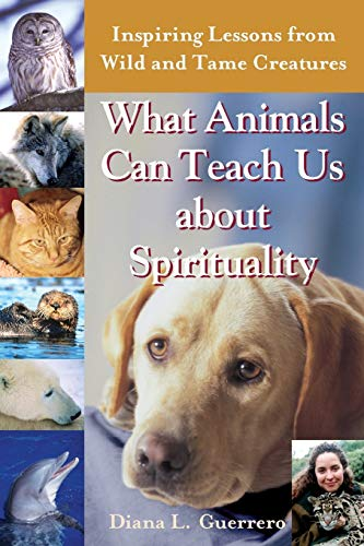 9781893361843: What Animals Can Teach Us About Spirituality: Inspiring Lessons from Wild and Tame Creatures