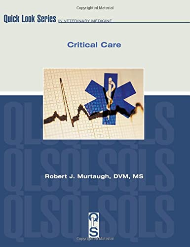 9781893441354: Critical Care (Quick Look Series)